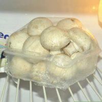 نحوه ی نگه داری قارچ های تازه